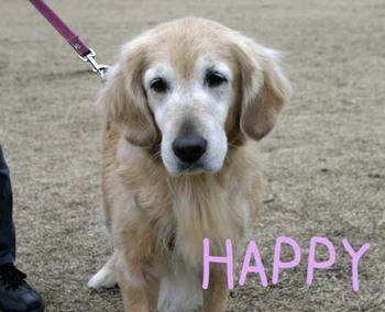 Happy_5