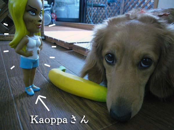 Kaoppa