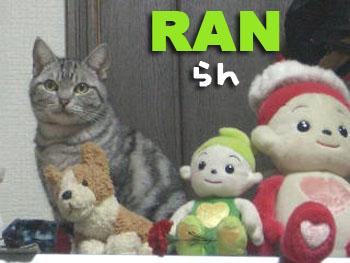 Ran2_3