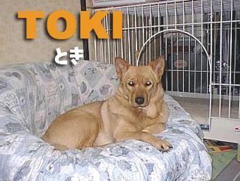 Toki4_3